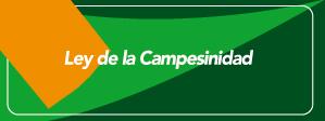 icono_campsn