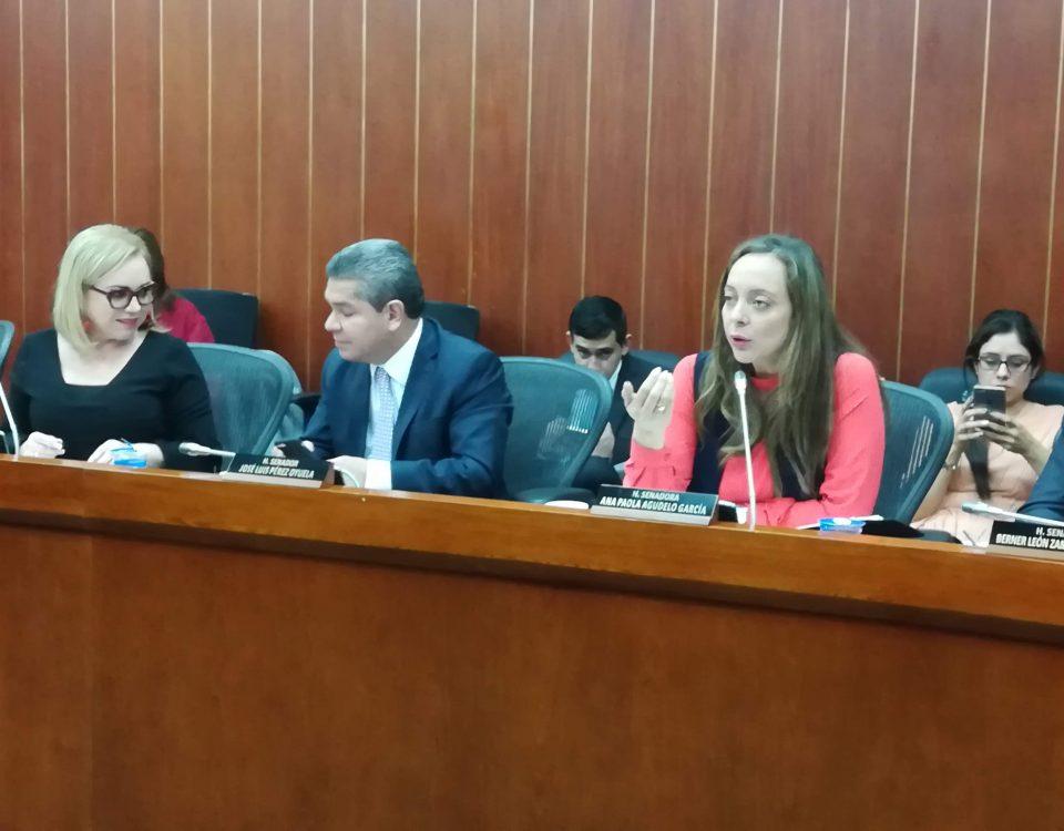 Nuevo Decreto deja en Firme retiro de 15-20 años para el Nivel Ejecutivo de la Policía Nacional